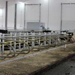 Grant Holdings Ltd. Jourdain Free Stall Facility-2