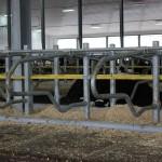 Grant Holdings Ltd. Jourdain Free Stall Facility-3