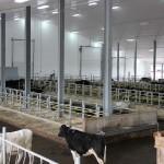 Grant Holdings Ltd. Jourdain Free Stall Facility-4