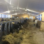 Raynaud Complete Jourdain Stabling Facility 2