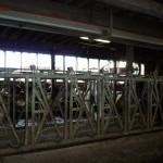 Steffenia Farms Headlocks 3