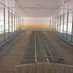 Vriesland Farm Ltd. Free Stall Facility 2