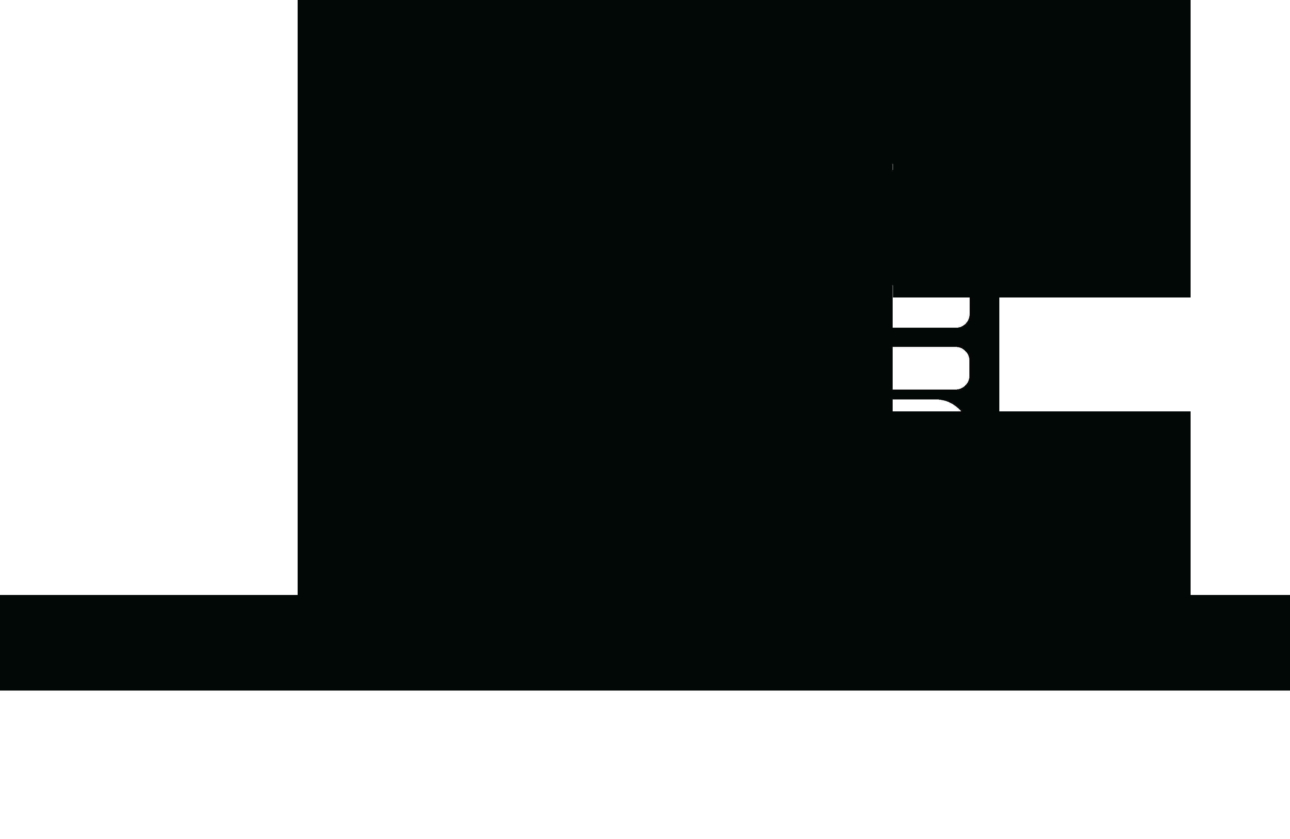 DLS Manufacturing Inc